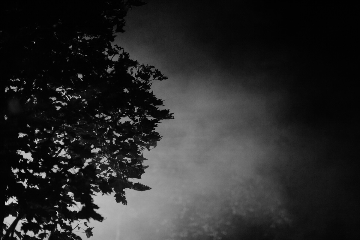 Black-and-white-fine-art-photography-wall-decor-by-emerging-artist-Studio-L-photographer-Laura-Schneider-_001