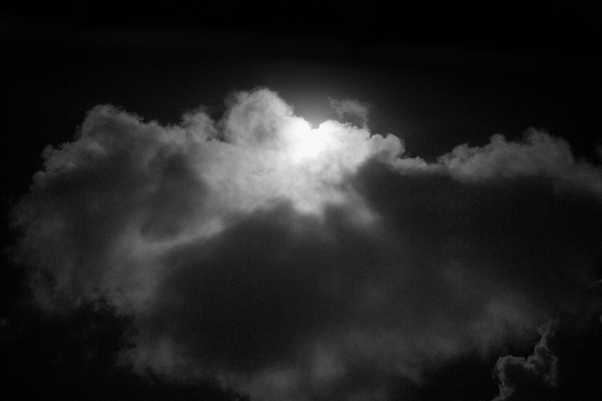 Black-and-white-fine-art-photography-wall-decor-by-emerging-artist-Studio-L-photographer-Laura-Schneider-_6526