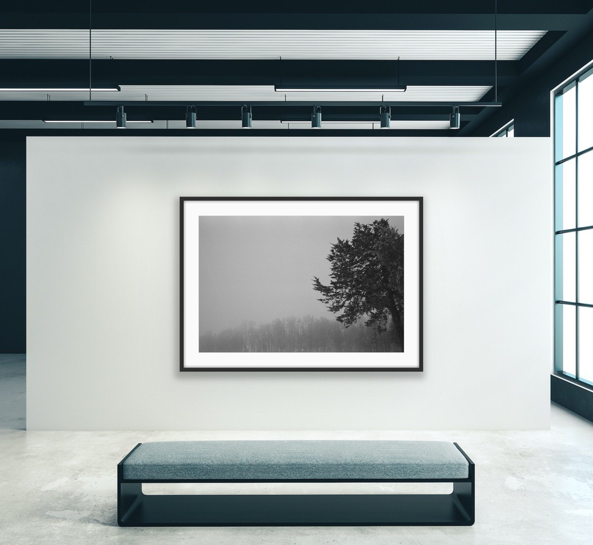 Black-and-white-fine-art-film-photography-wall-decor-by-emerging-artist-Studio-L-photographer-Laura-Schneider-_7851