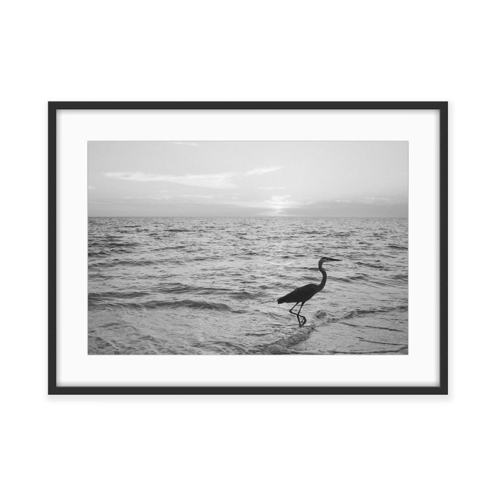 black-and-white-fine-art-film-photography-gallery-exhibition-by-Studio-L-photographer-Laura-Schneider-_7816