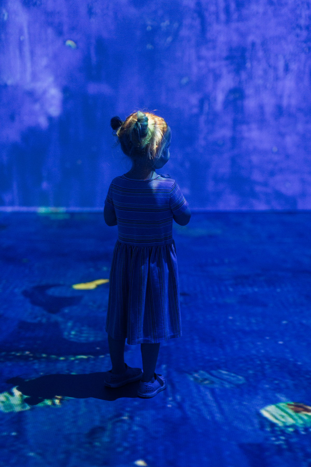 Van-Gogh-Exhibit-Wisconsin-Center-Milwaukee-by-Studio-L-Artist-Photographer-Laura-Schneider-_9811